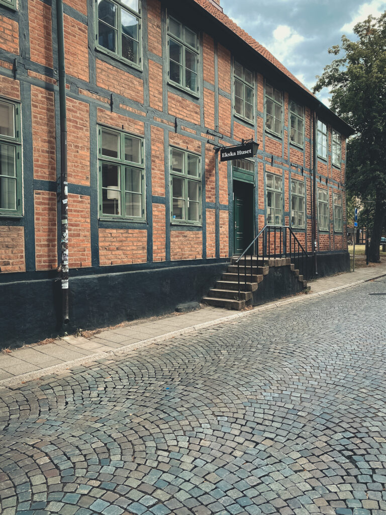 Lund, Sweden, House, old town, cobblestone street, history